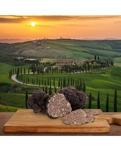 Truffle experience in Tuscany, 30 and 31 October 2021