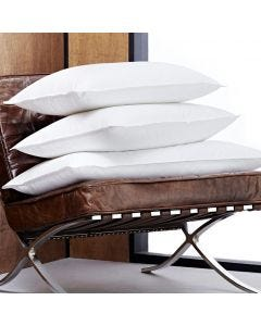 Duck Feather & Down Pillow - 50 x 70 cm